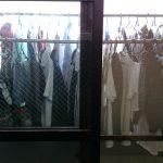 帝王の日常:洗濯物編